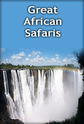 Tours and Safaris in Zimbabwe
